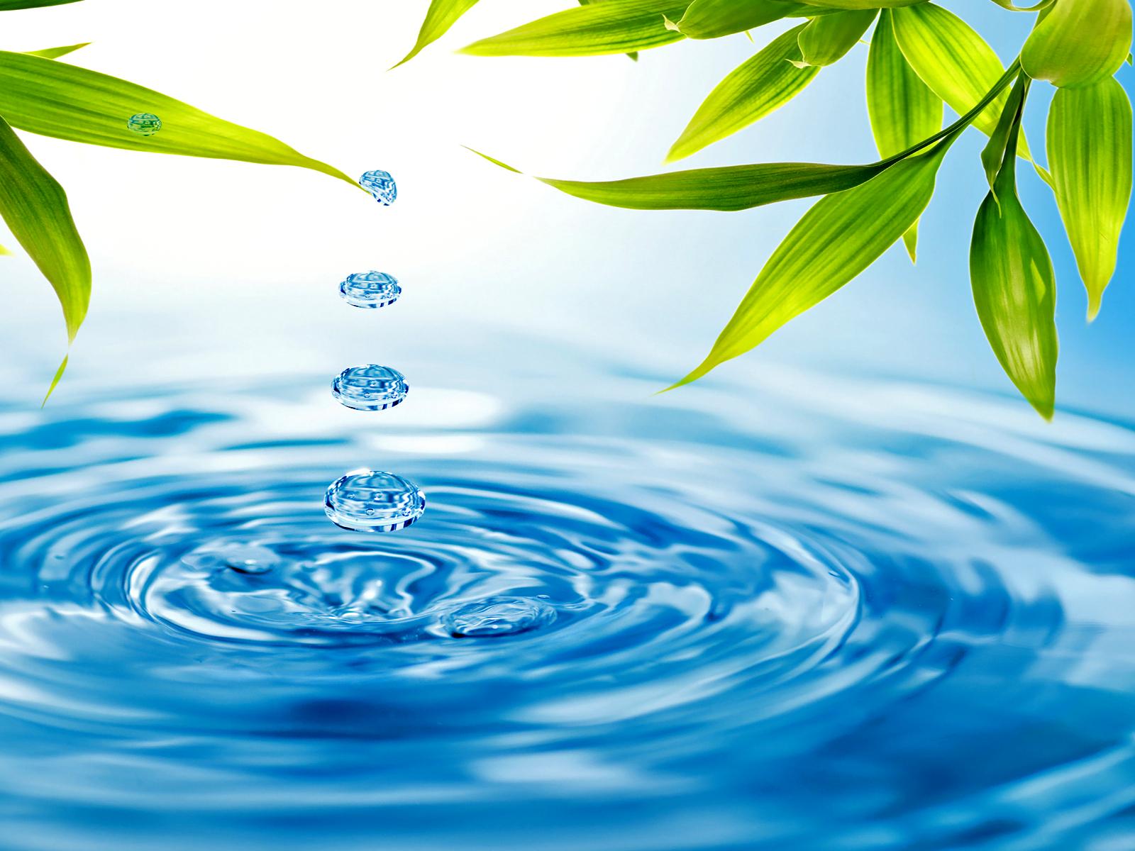 vízcseppek